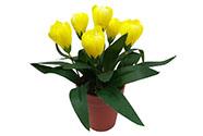 Umělá květina. Krokus v plastovém květináči, barva žlutá