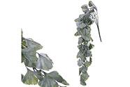 Ginkgo biloba, převis, umělá květina, zelená barva.