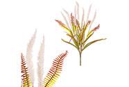 Trs kvetoucí trávy v krémové barvě, umělá květina.