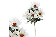 Puget  vánočních růží,poinsécek bílých (7hlav). Květina umělá.