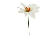 Květina umělá. Vánoční růže poinsécie  zápich bílá