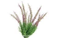 Vřes ve fialové barvě, umělá květina.