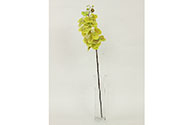 Orchidea, barva světle zelená. Květina umělá.