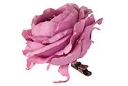 Květina umělá. Růže na klipu