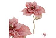 Poinsécie, vánoční růže, umělá květina, barva růžová .