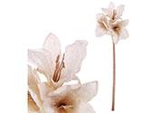 Amarylis, umělá květina, barva krémová .