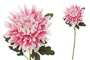 Chryzantéma , barva růžová. Květina umělá.
