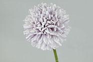 Květ česneku, barva světle fialová. Květina umělá.