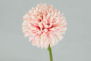 Květ česneku, barva růžová. Květina umělá.