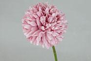 Květ česneku, barva tmavě růžová. Květina umělá.