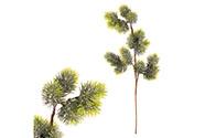 Větvička jehličí, zelená ojíněná vánoční přízdoba, umělá dekorace
