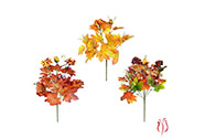 Podzimní trs - 7 hlav, mix 3 barev.