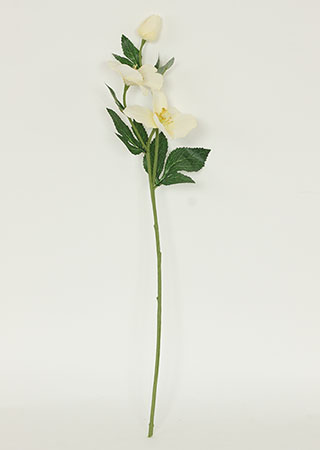 Čemeřice, bílá barva. Květina umělá.