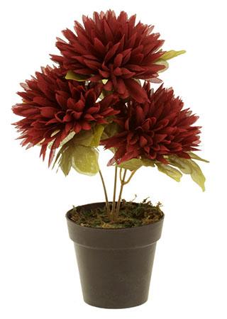 Chryzantéma v obalu, 3-hlavá, bordó. Květina umělá.