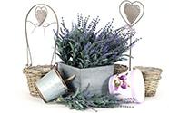 Obaly a kvetináče