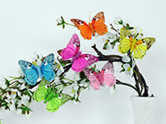 Motýle a vtáčiky